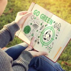 Professional Essay Writers Recommend Students to Go Green